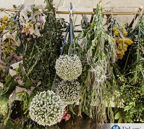 1-inst-key-to-longevity-herbs-37039